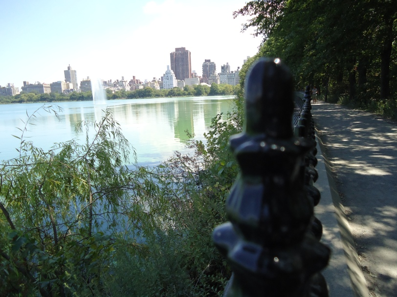 Citysights ny blog our favorite things to do in central park for Things to do at central park