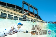 mets d_wright