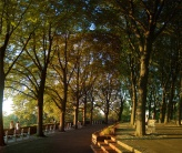 fort tryon park
